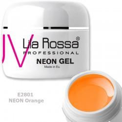 Gel Colorat Lila Rossa Neon 5g  - E2801 Orange