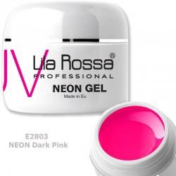 Gel Colorat Lila Rossa Neon 5g  - E2803 Dark Pink