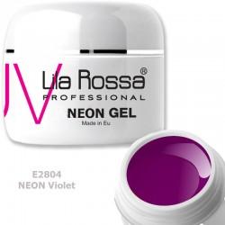 Gel Colorat Lila Rossa Neon 5g  - E2804  Violet