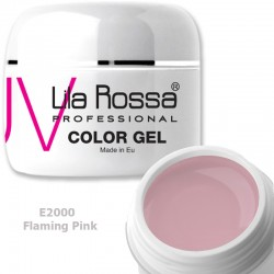 Gel Colorat Lila Rossa Neon 5g  - E2000 Flaming Pink