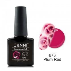 CANNI Blossom Gel 673